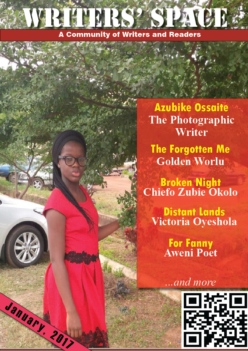 Writers Space Africa January edition